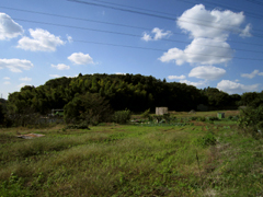 20101103a1