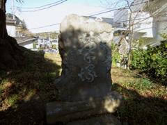 20101223a3
