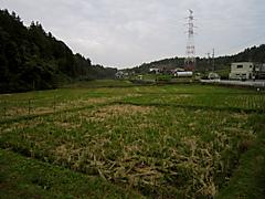 20111103c