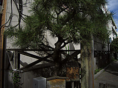 20121103g