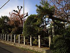 20121125d
