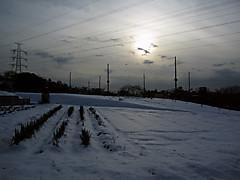 20130115c