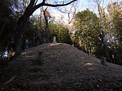 20130224a2