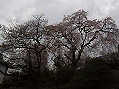 20130320e1_2
