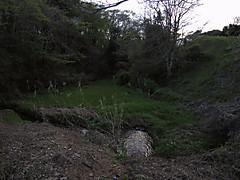 20130407b