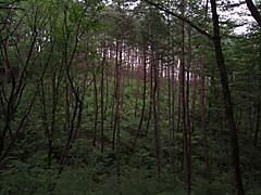 20130527b