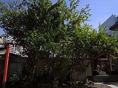 20140928b3