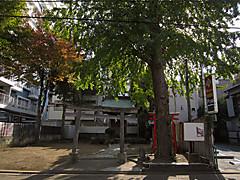 20141124a1