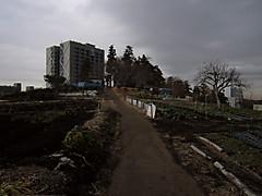 20150207j2