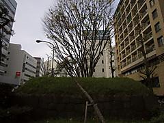 20150412f