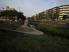 20150517v1