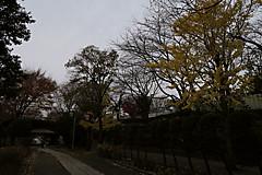 20151210a1