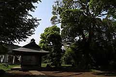 20160501c